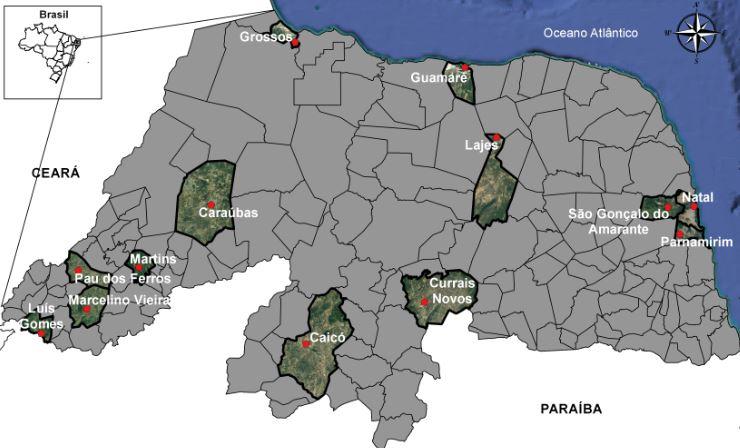 mapa ead